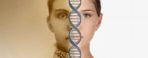 Epigenética y patrones de conducta