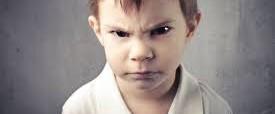 Trastornos de la conducta o del comportamiento